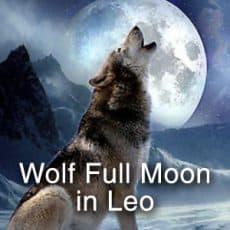 Wolf Full Moon in Leo