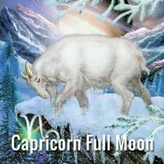 Full Moon in Capricorn Time to Commit