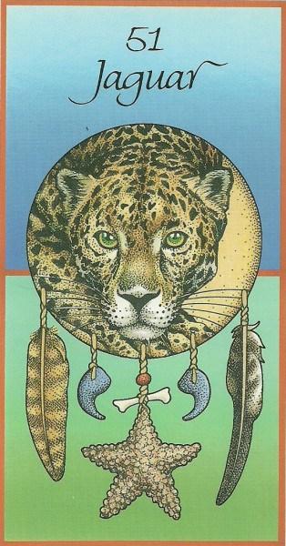 jaguar medicine cards