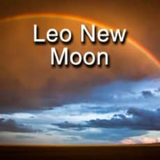 The Leo New Moon- Having a Hard Time?