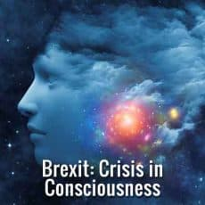 brexit crisis in consciousness