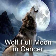 Wolf Full Moon in Cancer