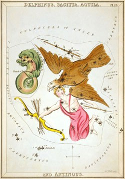 Aquila the eagle constellation in Aquarius