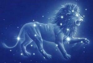 lion-stars